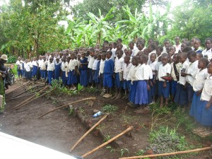 Students receive planting instructions at Mpunguti School in Bujest village, Masoko Ward, Tanzania (Source: ReTree International)
